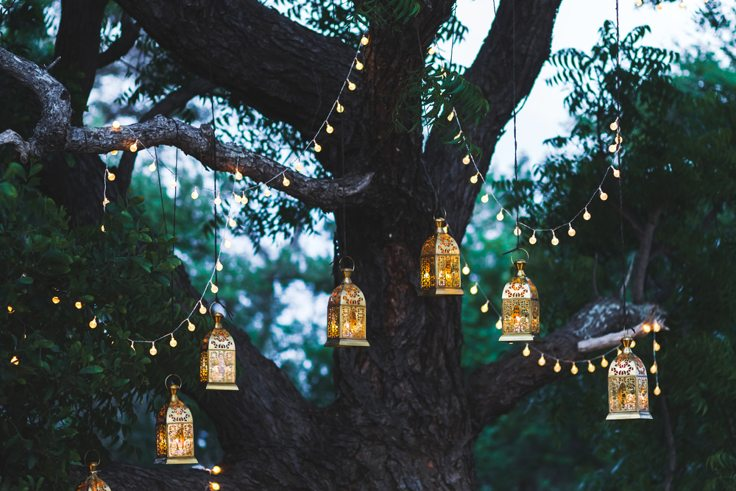 summer-garden-lights