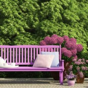 summer-garden-paint